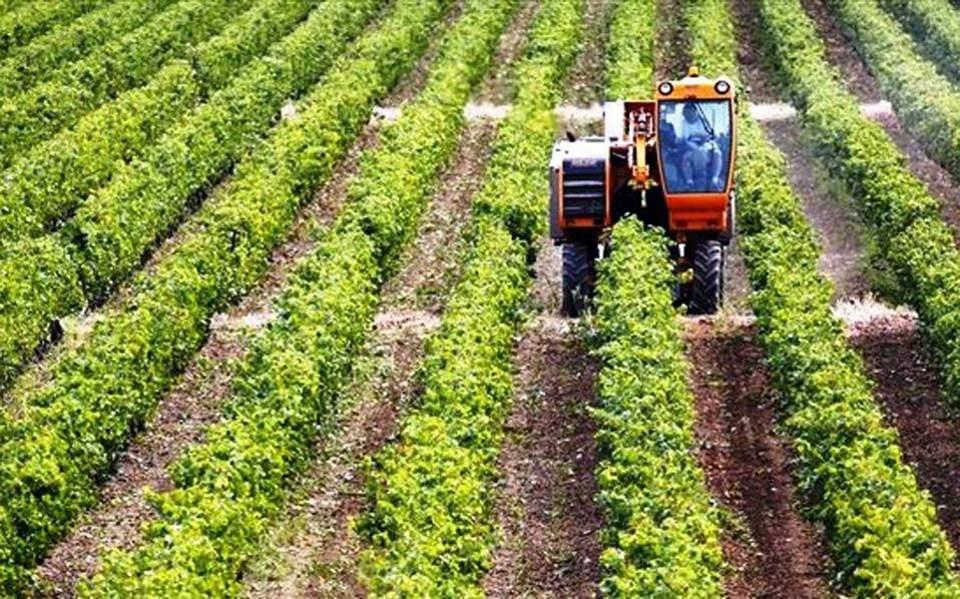 Αποτέλεσμα εικόνας για Στενή συνεργασία Ελλάδας-Κύπρου σε ευρωπαϊκά και διμερή γεωργικά θέματα.
