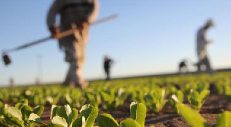 Αποτέλεσμα εικόνας για Παράταση για την παραχώρηση χρήσης αγροτικών ακινήτων σε κατά κύριο επάγγελμα αγρότες ή άνεργους.