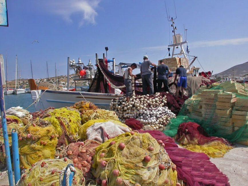 Αποτέλεσμα εικόνας για Έγκριση 42 έργων μεταποίησης προϊόντων αλιείας ύψους 40,5 εκατ. ευρώ