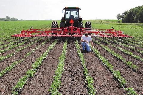 Αποτέλεσμα εικόνας για Σε πλήρη ενεργοποίηση ο νόμος για την παραχώρηση εκτάσεων του ΥΠΑΑΤ σε κατά κύριο επάγγελμα αγρότες και σε ανέργους.