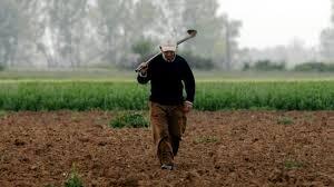 Θα αποζημιωθούν οι πληγέντες αγρότες